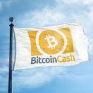 Bitcoin Cash Review – What is BCH?