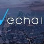 Analysis of the Vechain platform – VeChain (VEN) Cryptocurrency Review